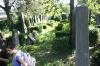 juedischerfriedhof_20
