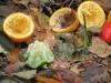 kompost rothwein_7