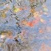 Blätter/Steine/Wasser_13