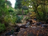 Der Garten im Herbst 2006