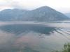 kostanjica 2012_16