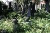 juedischerfriedhof_13