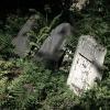 juedischerfriedhof_15