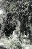 juedischerfriedhof_7